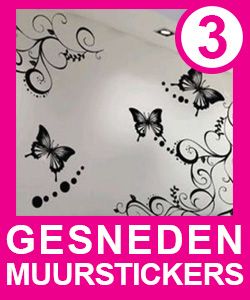 muurstickers_gesnedenl